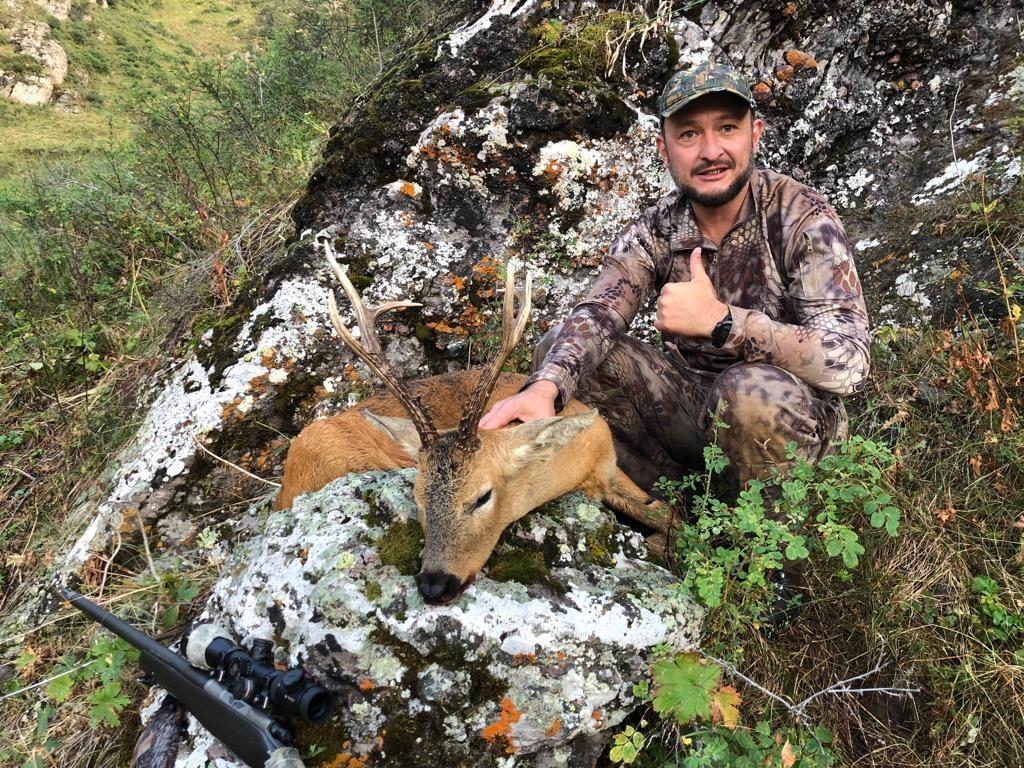 siberian-roe-deer