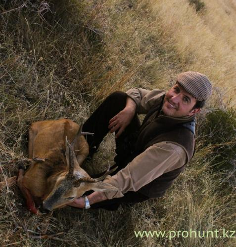 Roe Deer Hunting2