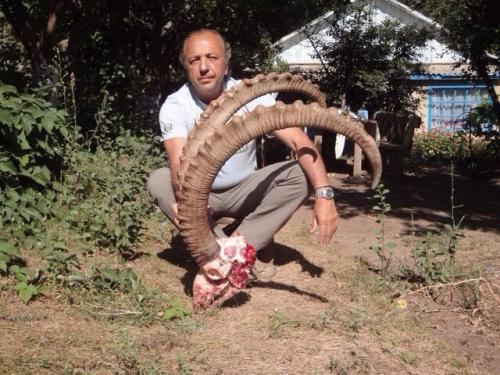 Ibex Hunting29