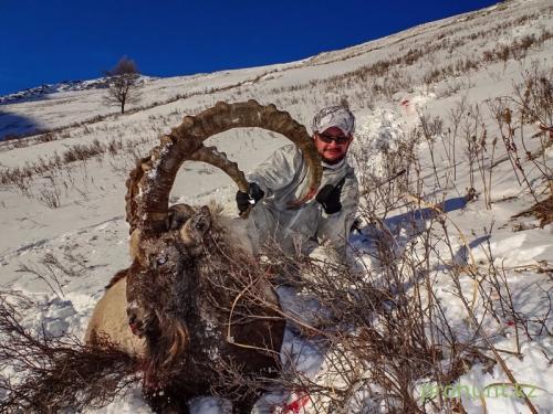 Ibex Hunting30