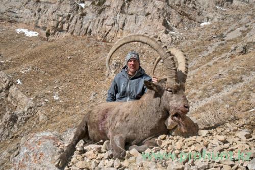 Ibex Hunting34