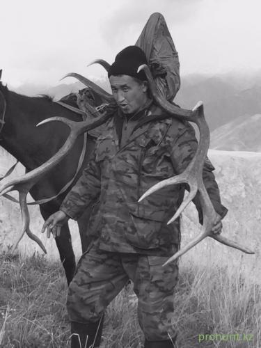 Maral Hunting11