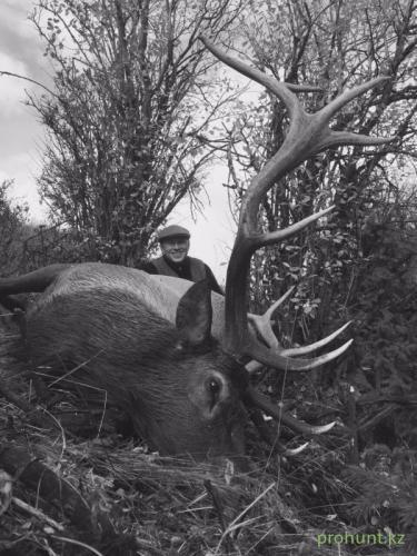 Maral Hunting14