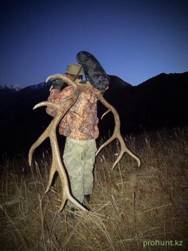Maral Hunting17