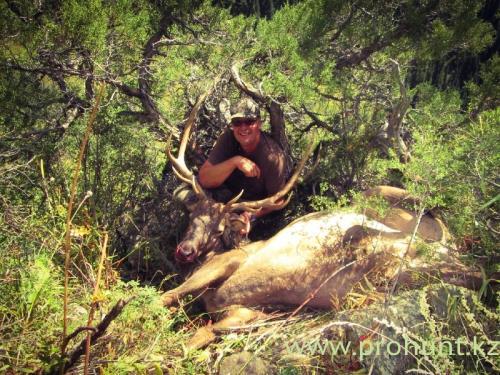Maral Hunting22