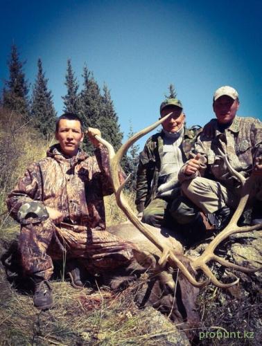 Maral Hunting28