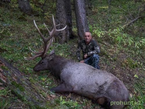 Maral Hunting29
